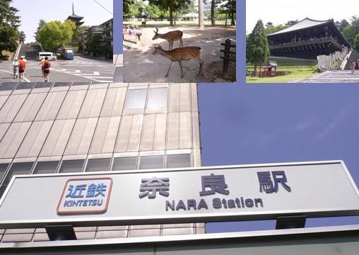 奈良マラソン イメージ画像.jpg